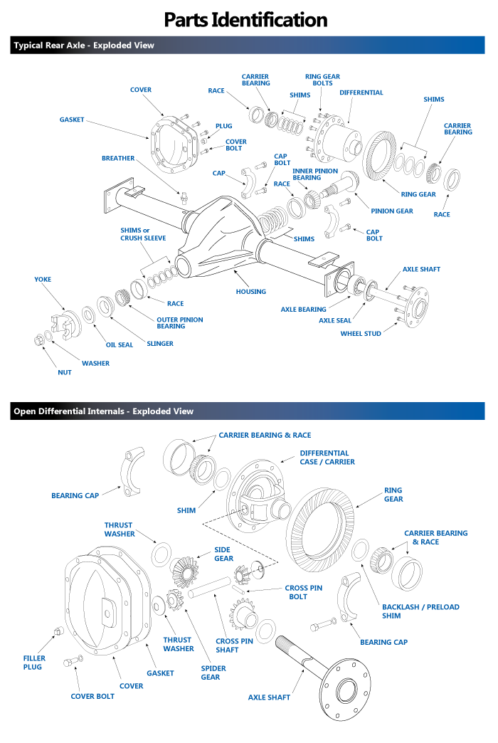 Differential Axle Exploded view